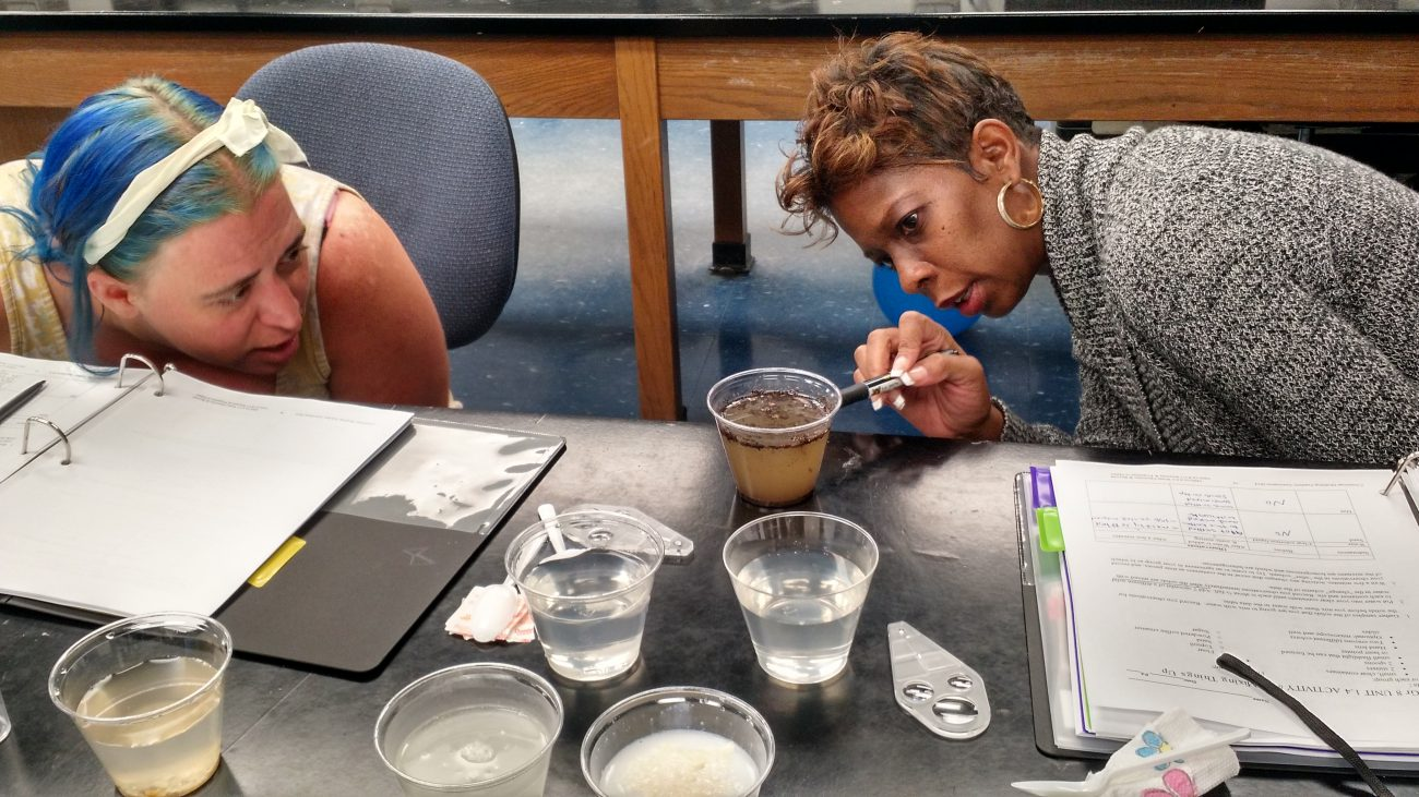 Photo of Teachers observing solutions